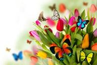 wiosnaa